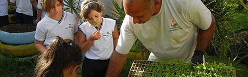 Projeto Hortas Escolares